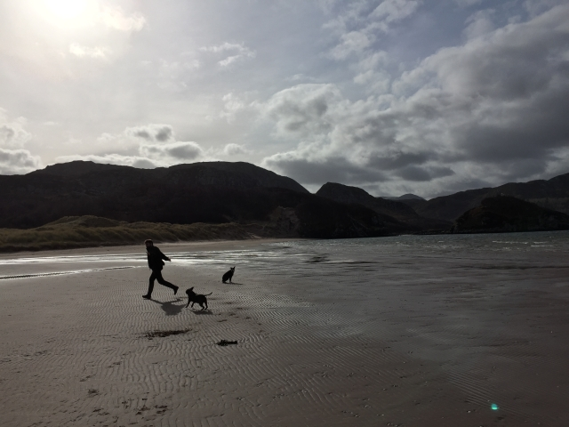 Charles Parkes running with our two dogs on a scottish beach